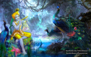 Let's give our heart to Krishna in this life time