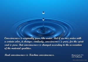 Quotes-by-Srila-Prabhupada-on-Consciousness